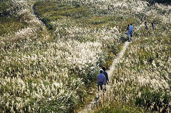 高原を歩く観光客
